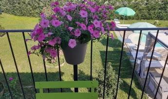 Laura's Country Resort di Celotto Laura Fiorenza